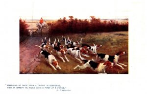 Dog  , He rides who is first at a fence  ( Fox Hunt )