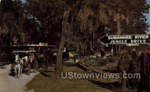 Suwanne River Tallahassee FL Unused