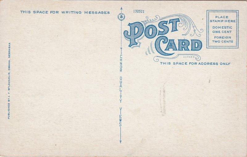 P1865 old postcard birds eye view farnam busy sreet omaha nebraska.