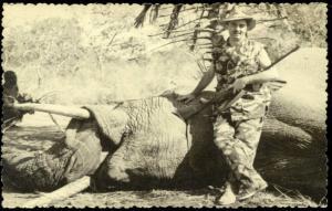 African Savannah ELEPHANT Hunter Hunting Trophy (1959) RP