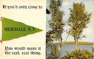 Misc Meridale, New York Postcard
