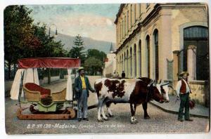 Madeira, Funchal, Carro de bois