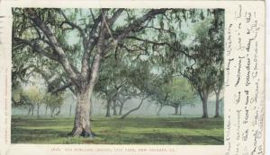NEW ORLEANS, Louisiana, PU-1906; Old Duelling Ground, City Park