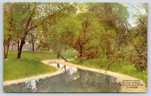 Chicago Illinois~Washington Park~Wading Pool Below Spring~1910 VO Hammon PC