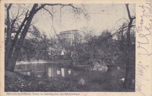Swans on a Pond, TEPLITZ-SCHONAU, Czech Republic, PU-1915