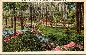 Florida Jacksonville The Oriental Gardens 1940 Curteich