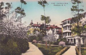 North Carolina Pinehurst The Carolina Albertype