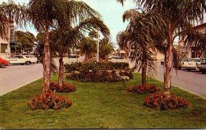 Florida Venice Portion Of Venice Avenue 1970