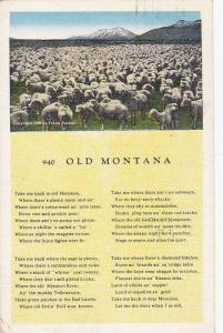 Herd of Sheep, Mountain Range, Poem Old Montana, 1940