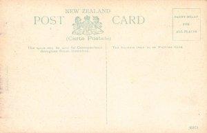 Outlet of Lake, Waikaremoana, New Zealand, Early Postcard, Unused