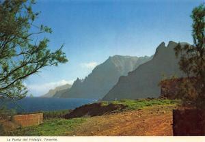 Spain Tenerife La Punta del Hidalgo Landscape Postcard