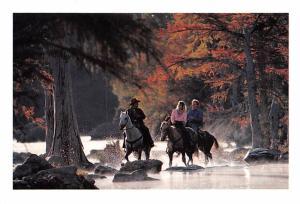 Horseback Riding - Austin, Texas