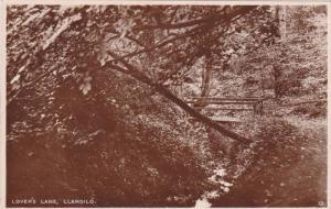 RP; Lovers' Lane, Llandilo, Sydney, New South Wales, Australia, 10-20s