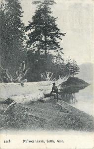 Seattle~Man Rests Foot on Little Log, Looks @ Huge One ~Driftwood Islands~1910