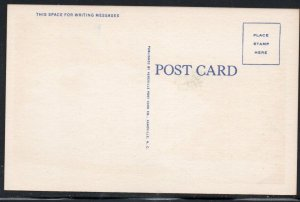 North Carolina colour PC Nose End Rock Yonahlossee Rd Linville  N.C.  unused