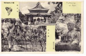 Harvesting grapes & buddha , KAFU, Japan , 20-30s