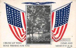 Flag 1917