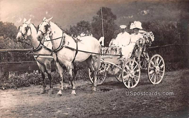 Horse and Carriage Ellenville NY Unused