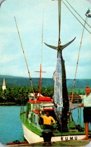 Hawaii Fishing Scene Marlin Fisherman's Luck