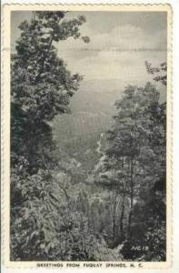 Aerial,Countryside,Mounta ins,Fuquay  Springs,NC,1943