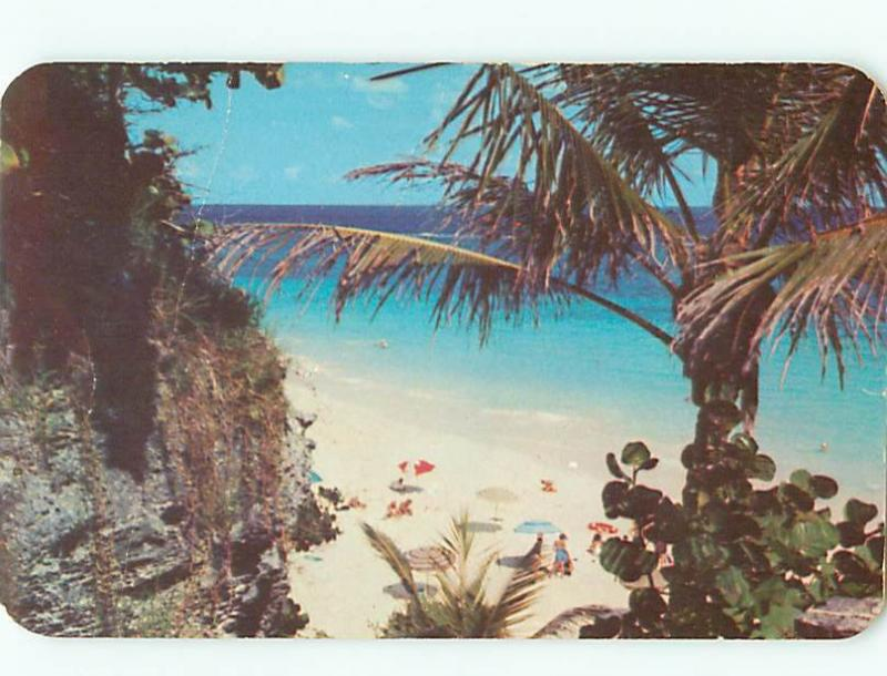 Vintage Post Card Coral Beach South Shore Paget Sand Beach Bermuda  # 3784
