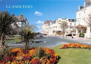 NEW Postcard, Llandudno, Conwy by Judges 44T