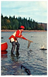 New Hampshire  Trout fishing