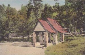 Califorinia Seigler Springs Soda Spring Seigler Hot Springs Albertype