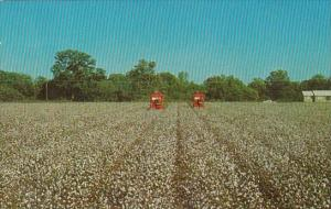 King Cotton Mechanical Picker In The South