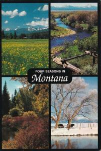 Montana Four Seasons Multi View