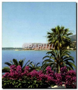Modern Postcard The Wonderful sites the French Riviera Menton M general view ...
