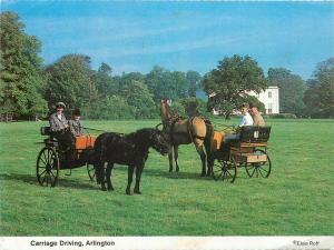 Horse carriage driving Arlington postcard