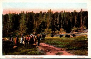Yellowstone National Park Tourists and Bears Haynes Photo
