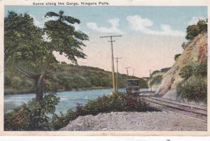 New York Niagara Falls Scene With Trolley Along The Gorge 1917
