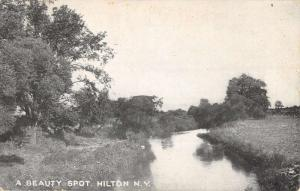 Hilton New York Beauty Spot Scenic River Antique Postcard K26427