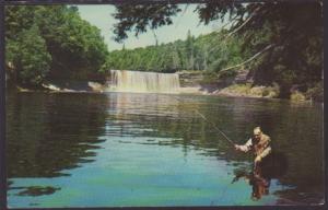 Upper Tahquamenon Falls,MI Postcard BIN