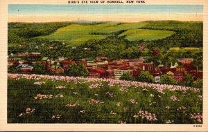 New York Hornell Birds Eye View