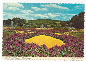 Tuxedo NY Sterling Forest Gardens Floral Carpet 4X6 Postcard