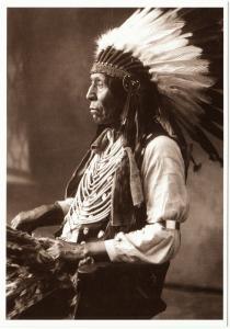Wild Horse Oglala Lakota Chief Native American Modern Postcard