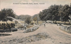 Entrance to Oakdale Park, Salina, Kansas, early hand colored postcard, unused