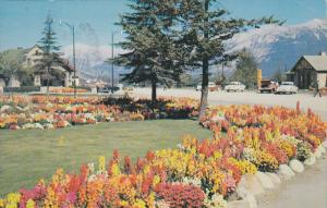 Flower Garden, Park Administration Building, Jasper Village Gardens, Jasper N...