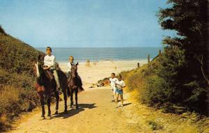 Watsonville California Camp St Francis Horse Riding Vintage Postcard K70862