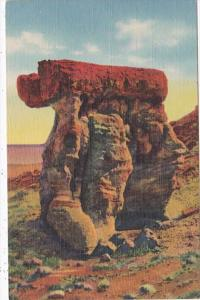 Arizona The Arm Chair Petrified Forest Curteich