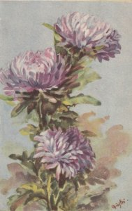Art Deco ; CHIOSTRI ; Purple Dahlias , 1910-30s
