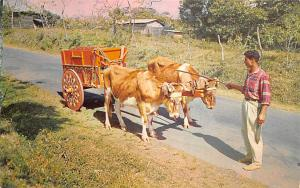 Costa Rica Carreta Tipica, Typical Oxcart  Carreta Tipica, Typical Oxcart