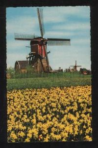 059480 Holland in flowerdecoration MILL Vintage PC