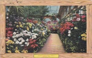 Pennsylvania Philadelphia Horticultural Hall Interior 1909