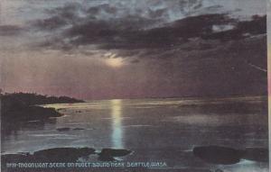 Washington Seattle Moonlight Scene On Puget Sound