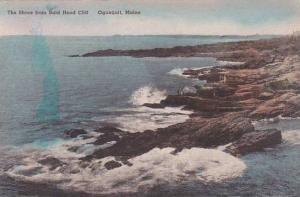 Maine Ogunquit The Shore From Bald Head Cliff Albertype