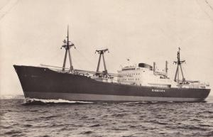 MS Minnesota Swedish America Line DFDS Ship RPC Postcard